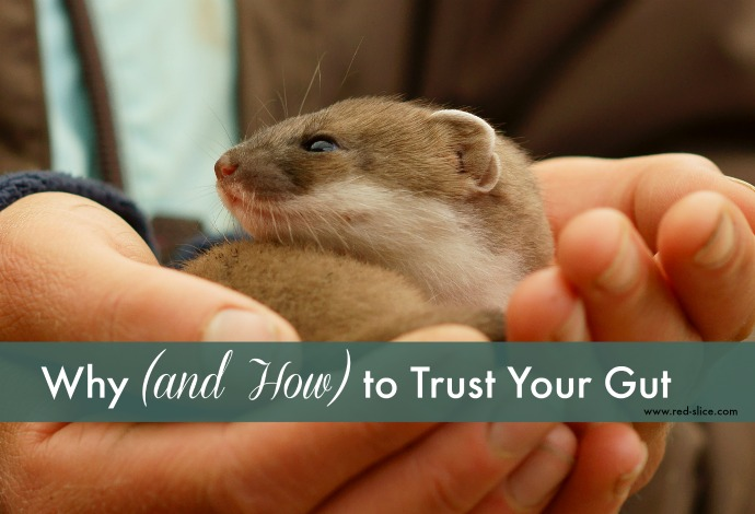 Why (and How) to Trust Your Gut