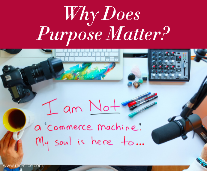 Why Does Purpose Matter